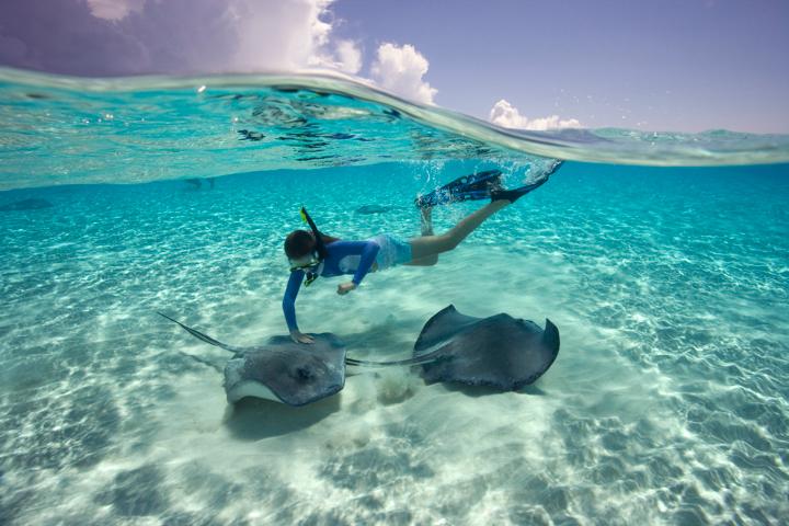 Undersea Fun on Grand Cayman